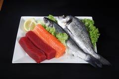Μικτά ψάρια Στοκ φωτογραφία με δικαίωμα ελεύθερης χρήσης