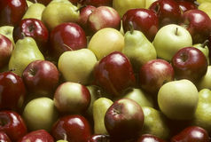 μικτά bartlet αχλάδια μήλων Στοκ εικόνα με δικαίωμα ελεύθερης χρήσης