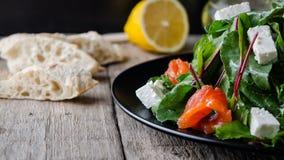Μικτή σαλάτα με το σολομό και το τυρί φέτας στοκ εικόνες με δικαίωμα ελεύθερης χρήσης