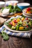 Μικτή σαλάτα, φυτική σαλάτα Στοκ Εικόνες