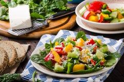 Μικτή σαλάτα, φυτική σαλάτα Στοκ φωτογραφίες με δικαίωμα ελεύθερης χρήσης