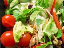 Μικτή σαλάτα, ντομάτες, καρύδια, πιπερόριζα Στοκ Φωτογραφίες