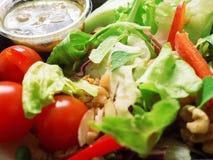 Μικτή σαλάτα, ντομάτες, καρύδια, πιπερόριζα Στοκ Εικόνες