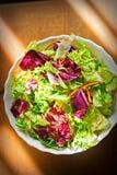 Μικτή σαλάτα φύλλων - πράσινα με τη σαλάτα radicchio και το ξυμένο καρότο Στοκ φωτογραφίες με δικαίωμα ελεύθερης χρήσης