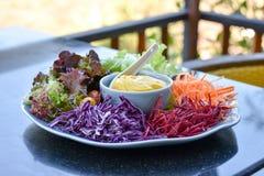 Μικτή φυτική σαλάτα Στοκ εικόνες με δικαίωμα ελεύθερης χρήσης