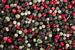 Μικτοί κόκκινοι, άσπροι και μαύροι σπόροι καλαμποκιού πιπεριών Στοκ φωτογραφία με δικαίωμα ελεύθερης χρήσης