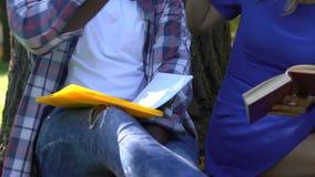 Μικτοί σπουδαστές φυλών που μελετούν και που προετοιμάζονται στους διαγωνισμούς την ηλιόλουστη ημέρα στο πάρκο απόθεμα βίντεο