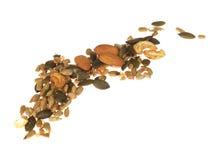 μικτοί σπόροι καρυδιών Στοκ φωτογραφίες με δικαίωμα ελεύθερης χρήσης