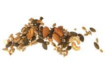 μικτοί σπόροι καρυδιών Στοκ Εικόνες