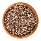 Μικτοί quinoa σπόροι στο ξύλινο κύπελλο πέρα από το λευκό Στοκ Φωτογραφίες