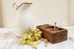 Μικτός με τα φρούτα φθινοπώρου και μια στάμνα Στοκ Εικόνα