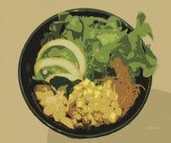 Μικτό απεικόνιση κύπελλο σαλάτας σολομών Στοκ εικόνες με δικαίωμα ελεύθερης χρήσης