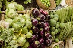Μικτό λαχανικό στην επίδειξη Στοκ Φωτογραφίες