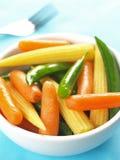 μικτό λαχανικό σαλάτας Στοκ φωτογραφία με δικαίωμα ελεύθερης χρήσης