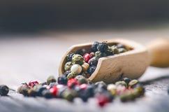 Μικτό ολόκληρο πιπέρι σε μια ξύλινη σέσουλα Φυσικό παλαιό υπόβαθρο Έννοια των τροφίμων, καρύκευμα Στοκ Φωτογραφίες