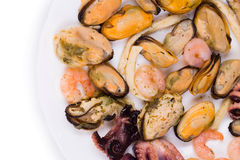 Μικτό πιάτο θαλασσινών Στοκ εικόνες με δικαίωμα ελεύθερης χρήσης