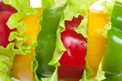 Μικτό πιπέρι κουδουνιών με το μαρούλι Στοκ Φωτογραφία