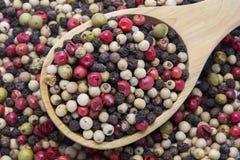 Μικτό πιπέρι χρώματος και ξύλινο κουτάλι Στοκ φωτογραφία με δικαίωμα ελεύθερης χρήσης