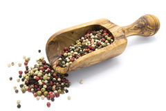 Μικτό πιπέρι χρώματος Στοκ φωτογραφία με δικαίωμα ελεύθερης χρήσης