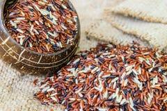 Μικτό ρύζι στο καφετί υπόβαθρο σάκων Στοκ Εικόνα