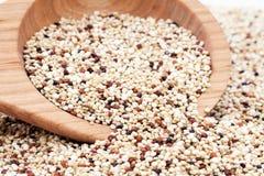 Μικτό Quinoa Στοκ Εικόνα