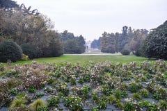 Μιλάνο Ιταλία: Το πάρκο Sempione ay πέφτει Στοκ Εικόνα