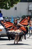 Μινεάπολη, ΜΝ, παρέλαση 2013 υπερηφάνειας LGBT στοκ εικόνες