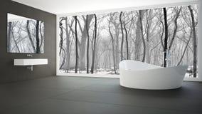 Μινιμαλιστικό άσπρο και γκρίζο λουτρό με το μεγάλο πανοραμικό παράθυρο, WI Στοκ εικόνες με δικαίωμα ελεύθερης χρήσης