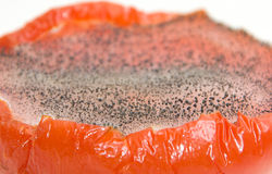 μισή απηρχαιωμένη ντομάτα πο& στοκ εικόνα