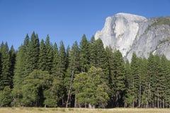 Μισός θόλος, Yosemite Στοκ Φωτογραφία