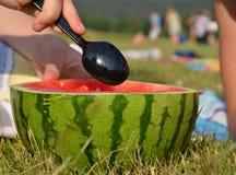 Μισό καρπούζι περικοπών που τρώει με το κουτάλι στην παραλία Στοκ φωτογραφίες με δικαίωμα ελεύθερης χρήσης