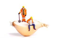 μισό κρεμμύδι στοκ φωτογραφία με δικαίωμα ελεύθερης χρήσης