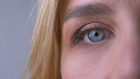 Μισό πορτρέτο κινηματογραφήσεων σε πρώτο πλάνο της σωστής προσοχής μπλε ματιών της γυναίκας άμεσα στη κάμερα στο γκρίζο υπόβαθρο απόθεμα βίντεο