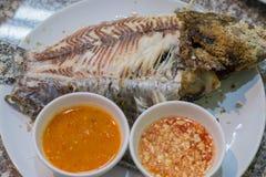 μμένα ψάρια στοκ φωτογραφίες με δικαίωμα ελεύθερης χρήσης