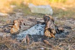Μμένη φωτιά στοκ εικόνα με δικαίωμα ελεύθερης χρήσης