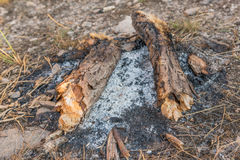 Μμένη φωτιά στοκ φωτογραφία με δικαίωμα ελεύθερης χρήσης