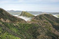 Μμένοι θάμνοι, cloudiness στην κοιλάδα, υψηλή πεδιάδα serra του Paul DA στοκ εικόνα