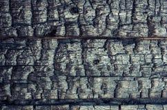 Μμένοι ξύλινοι πίνακες Στοκ Εικόνες