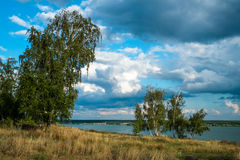 Μμένος από τον ήλιο Στοκ Φωτογραφίες