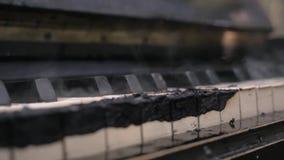 Μμένος ολοσχερώς στο καπνίζοντας πληκτρολόγιο πιάνων άνθρακα φιλμ μικρού μήκους