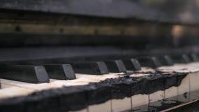 Μμένος ολοσχερώς στο μαύρο καπνισμένο πληκτρολόγιο πιάνων απόθεμα βίντεο