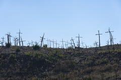 Μμένο δασικό σύνολο των σταυρών που γίνονται με τους κλάδους Στοκ Φωτογραφία
