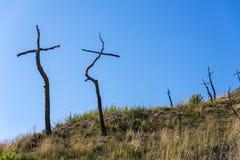 Μμένο δασικό σύνολο των σταυρών που γίνονται με τους κλάδους Στοκ φωτογραφία με δικαίωμα ελεύθερης χρήσης