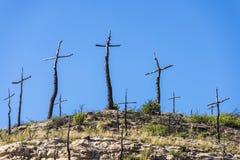 Μμένο δασικό σύνολο των σταυρών που γίνονται με τους κλάδους Στοκ Εικόνες