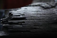 μμένο δάσος μαύρο ξύλο από την πυρκαγιά Δαχτυλίδια στο ξύλο Τέφρα Ξύλο που καίγεται στον άνθρακα στοκ φωτογραφίες