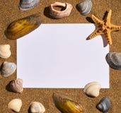 Μνήμες διακοπών από την παραλία, το θαλασσινό κοχύλι και τον αστερία Στοκ Εικόνες