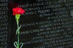 Μνημείο παλαιμάχων του Βιετνάμ στο Washington DC, λεπτομέρεια κινηματογραφήσεων σε πρώτο πλάνο, desi Στοκ Φωτογραφία