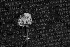 Μνημείο παλαιμάχων του Βιετνάμ στο Washington DC, λεπτομέρεια κινηματογραφήσεων σε πρώτο πλάνο, desi Στοκ Εικόνες