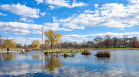Μνημείο της Ουάσιγκτον από τους κήπους συνταγμάτων - Washington DC, ΗΠΑ Στοκ Εικόνες