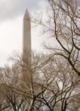 Μνημείο της Ουάσιγκτον, συνεχές ρεύμα Στοκ εικόνες με δικαίωμα ελεύθερης χρήσης